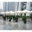 Solar Panel Umbrellas