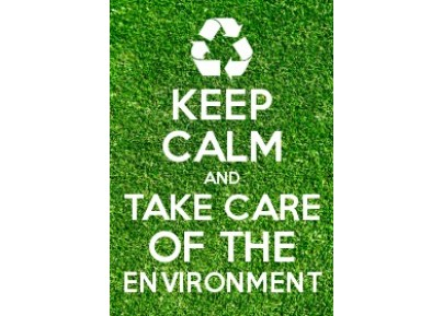 Save the Environment Canvas